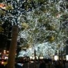 lights-photo1-e1354501941948-225x300